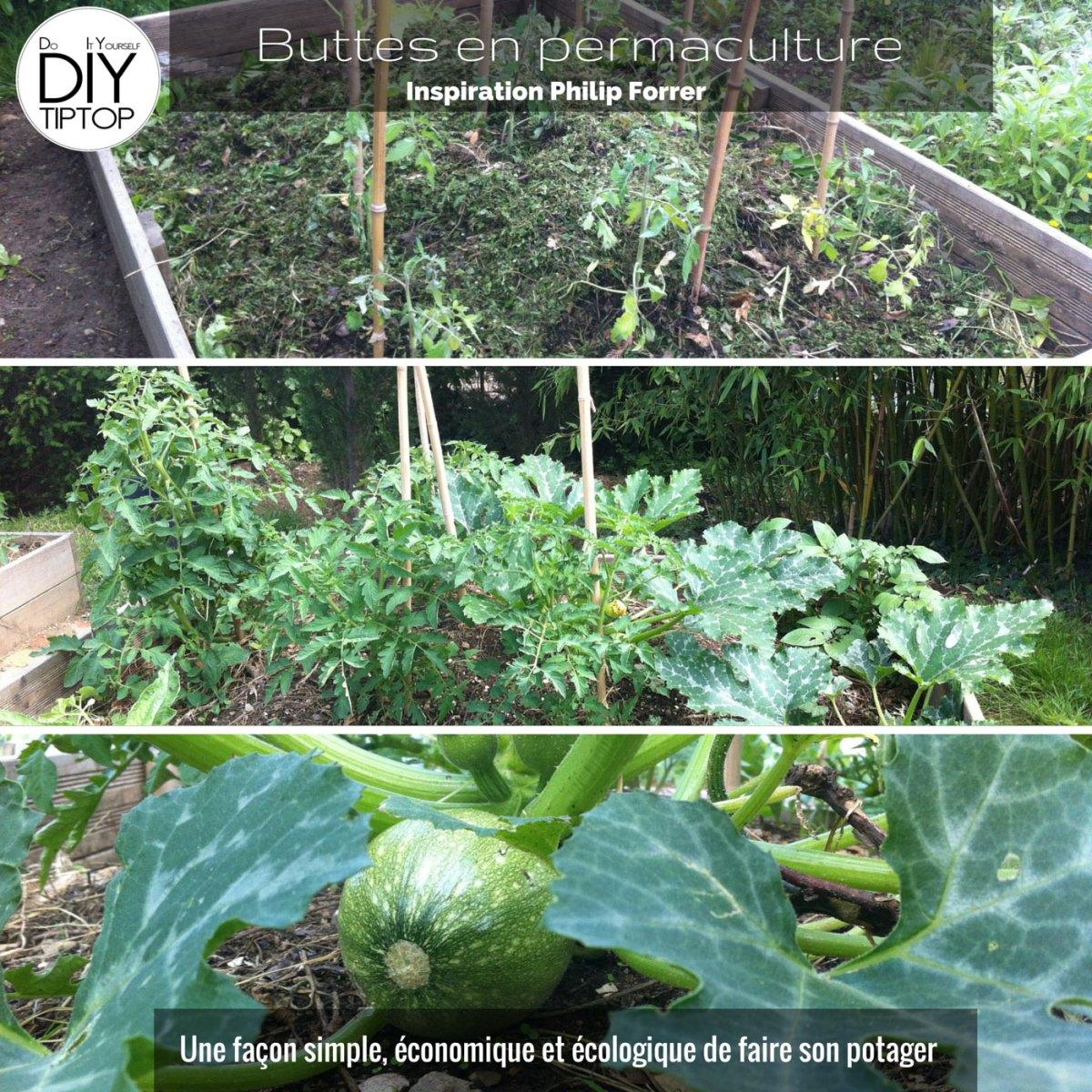 "DIY - Un potager bio sur ma terrasse et dans le jardin ""della mama"""